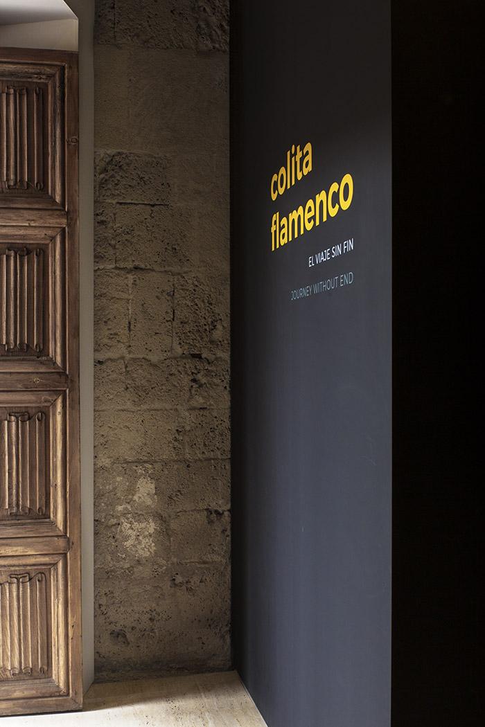 Colita Flamenco. El viaje sin fin